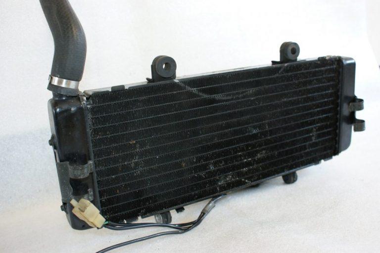 DSC00561